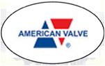 American-Valve-logo